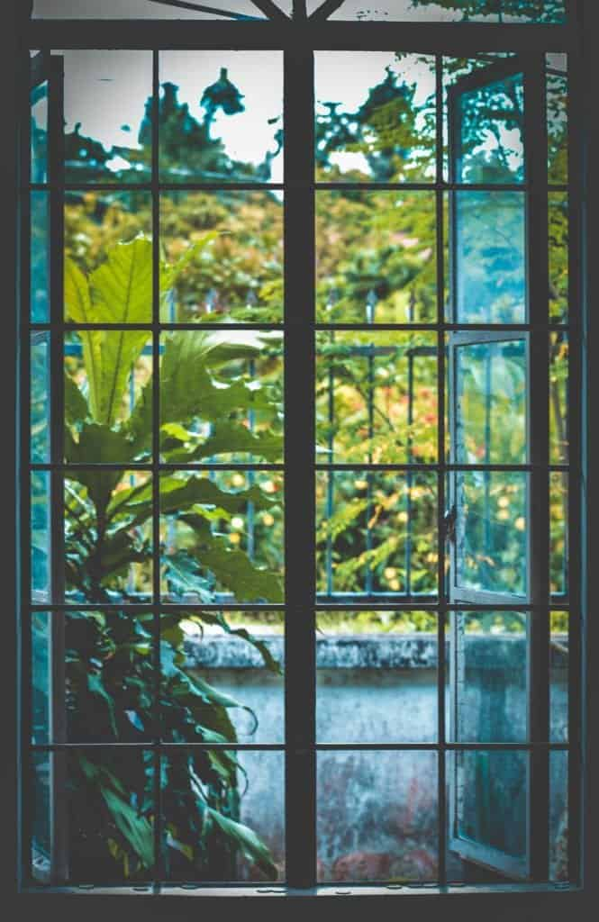 11 Window Cleaning Tips For Sparkling Window